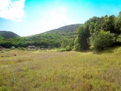 Купите большой земельный участок в горном Крыму под строительств