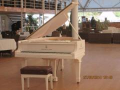 широкий выбор роялей и пианино