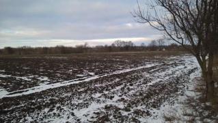 СРОЧНО ПРОДАМ!!! 2 земельных участка по 25 соток в Киевской обл